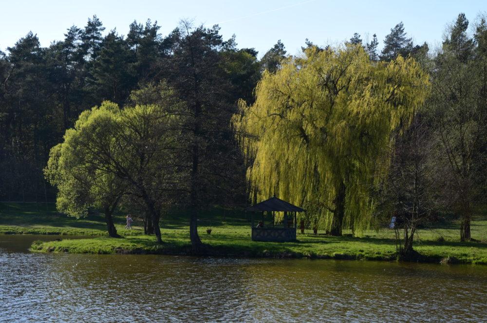 Park_Ekologiczny5_Pasłęk_Copyright_2019_TALE_Globalny_Bank_Zdjęć_i_Ilustracji